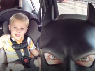 bat dad vines